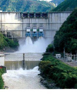 ダムを愛する者たちへ (日本語) 単行本